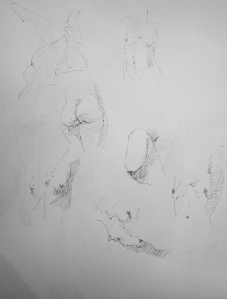 pen sketches female torso